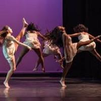 Dansa Creativa 2